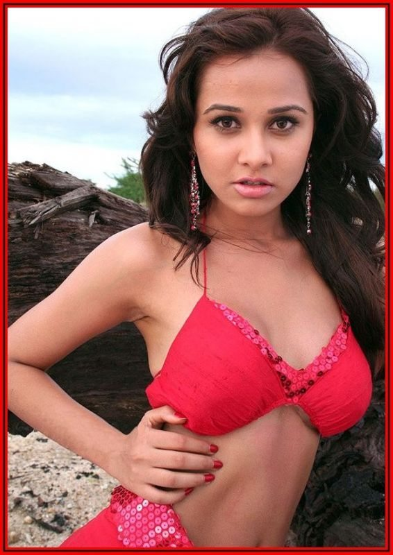 Nisha Kothari Biography