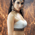 Tamannaah   Oops Moments    HD Pictures