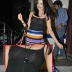 Celina Jaitley Oops Moment Wearing Transparent Dress