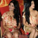 Shruti Haasan New Wardrobe Malfunction