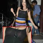 Celina Jaitley Oops Moment Wearing Transparent Dress